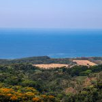 Unobstructed Ocean View