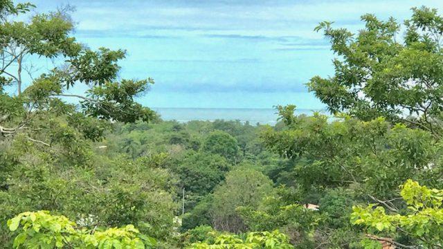 Bahia Ballena Ocean View