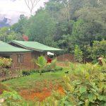 1.97-Acre Property in Uvita