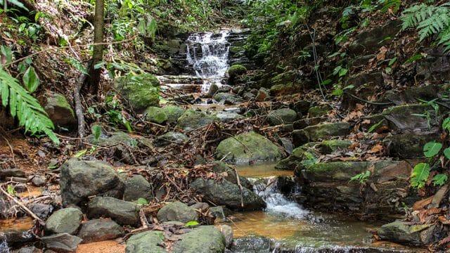 Year Round Water Source