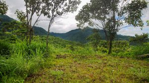 Over 16 Acres in Tres Rios with Eco-Tourism Opportunity