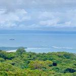 Whale's Tail Ocean View