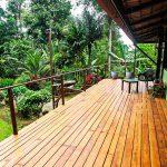 Tropical Setting