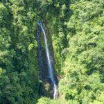 Waterfall View