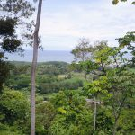 Private Forested Setting
