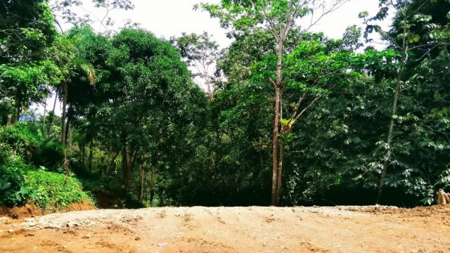 0.5-Acre Land Parcel