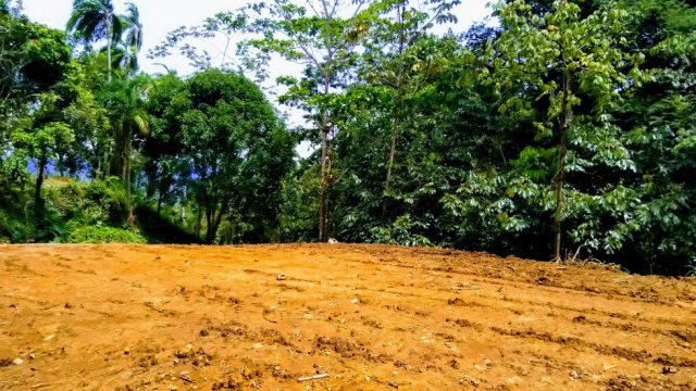Affordable Home Building Site Near Dominical