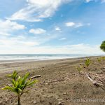 Miles of Sandy Tropical Beach