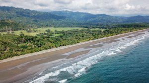 Premier Beachfront Lots for Sale Just North of Dominical
