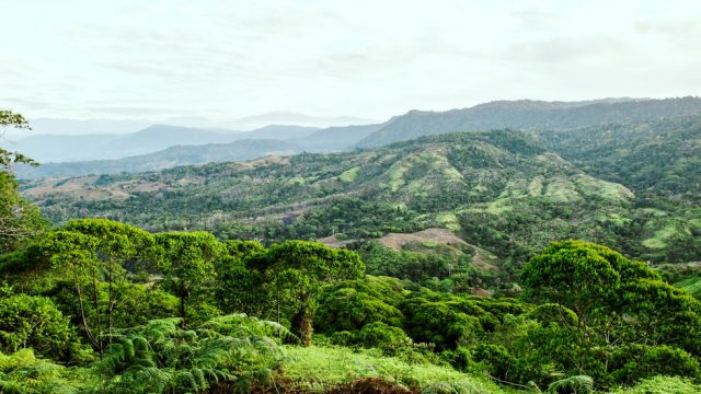 2.5-10 Acre Land Parcels