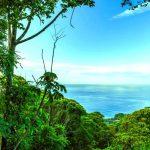 Costa Verde Estates