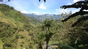 Three Acre Mountain Farmland Above San Isidro del General