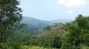 Colinas Pacifica 2.5 Acre Property Lot in Platanillo