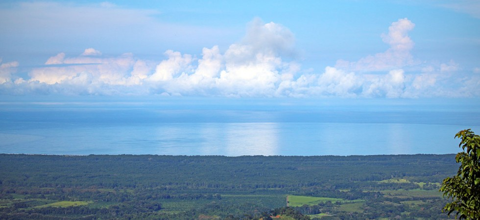 185 Acres With Ocean Views and Fertile Land Ready for Development