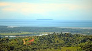 258 Acre Ocean View Tropical Paradise with Segregated Building Sites