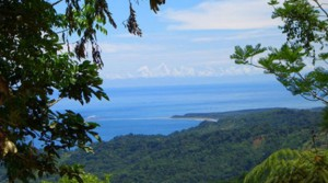 312 Acres of Spectacular Ocean View Land in Ojochal