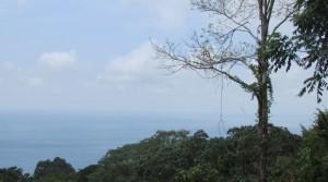 Ocean View Lot in Dominical For Commercial or Residential Use