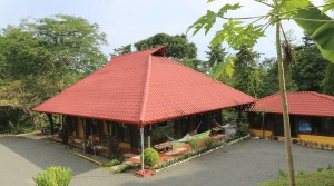 Ten Room Bank Foreclosed Nature Hotel By the Beach in Uvita