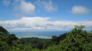 Over 11 Acres With Ocean and Mountain Views In Dominical