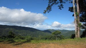 Over Three Acre Land Parcel In Platanillo With Multiple Building Sites