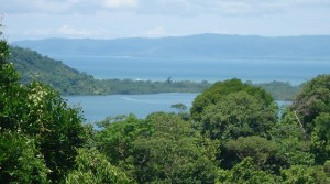 Tropical Land In Golfito With Fresh Water Streams And Bay Views