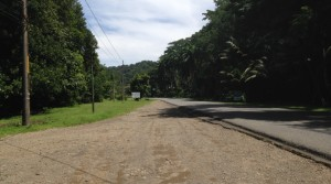 Commercial Building Lot By Dominical Beach With Highway Frontage