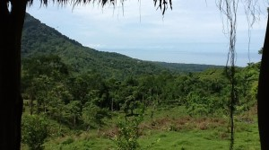 270 Acre Ocean View Property In The Hills Of Portalon By Dominical