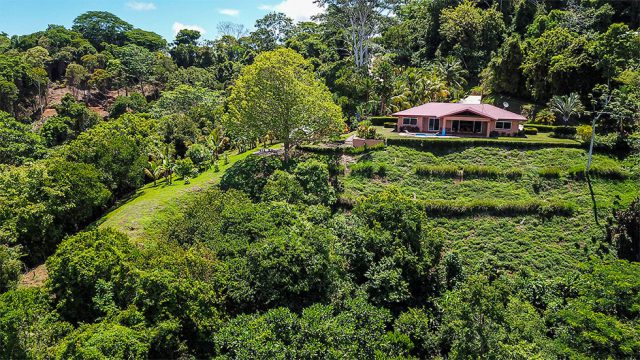 4.9 Acres of Privacy