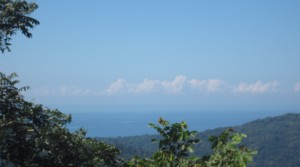 Ocean View Land With Over Three Acres Near The Beaches Of Dominical