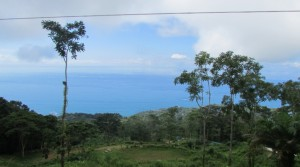 Over One Acre Ocean View Land Parcel In The Dominical Hills