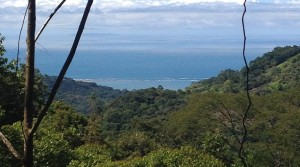 3 Acre Land Parcels In The Mountains With Waterfall And Ocean Views