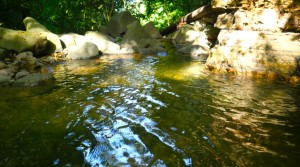Large Ocean View Land Parcel With Fresh Water Stream Above Playa Uvita