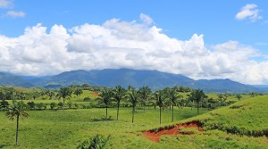 Cattle Ranch With Highway Frontage Minutes From The Quepos Airport