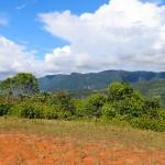 Ideal Eco-Community Location