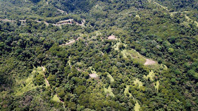 275 Acres Escaleras Dominical