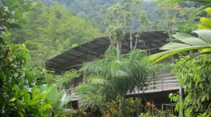 Organic Farm With Home And Educational Center In The Mountains