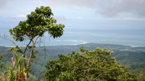 Beautiful Eco-Resort Style Property In The Mountains Above Uvita
