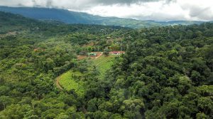 Platanillo Estates Affordable Land Parcels Close To Dominical