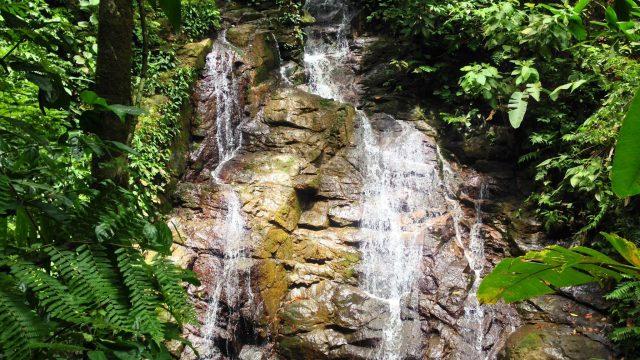 Private Nature Reserve