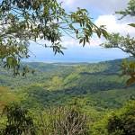 Ocean View Land Parcel