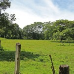 Farm Land In Costa Rica