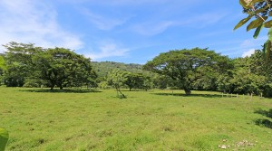 Finca Baru 51 Acre Commercial Property With Public Road Frontage