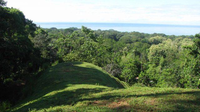 Toucan Ridge