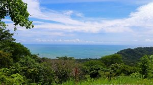 Ocean View Land Parcel With Multiple Building Sites In Dominical
