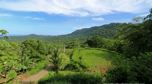 Ocean View Lot In The Marina Vista Community Near Dominical