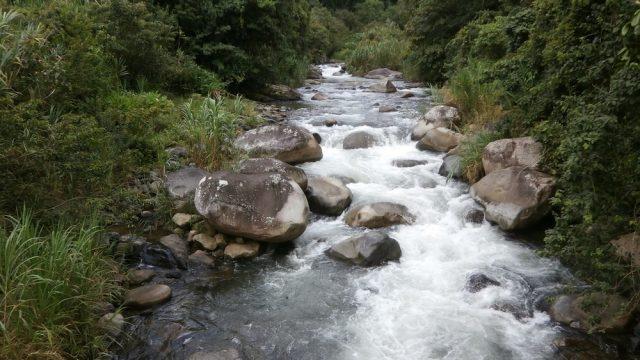 Chirripo River Frontage