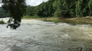 Land Parcel With River Frontage Famous For Whitewater Rafting