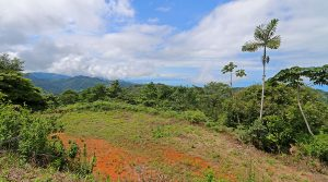 Ridgeline Land Parcel With Perfect Climate And Whitewater Ocean Views