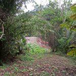 Home Site In Lagunas