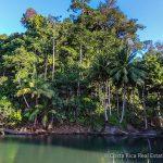 Jungle River Costa Rica